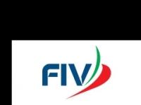 1_1_fiv_logo.jpg